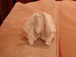 Towel Animals in room  052